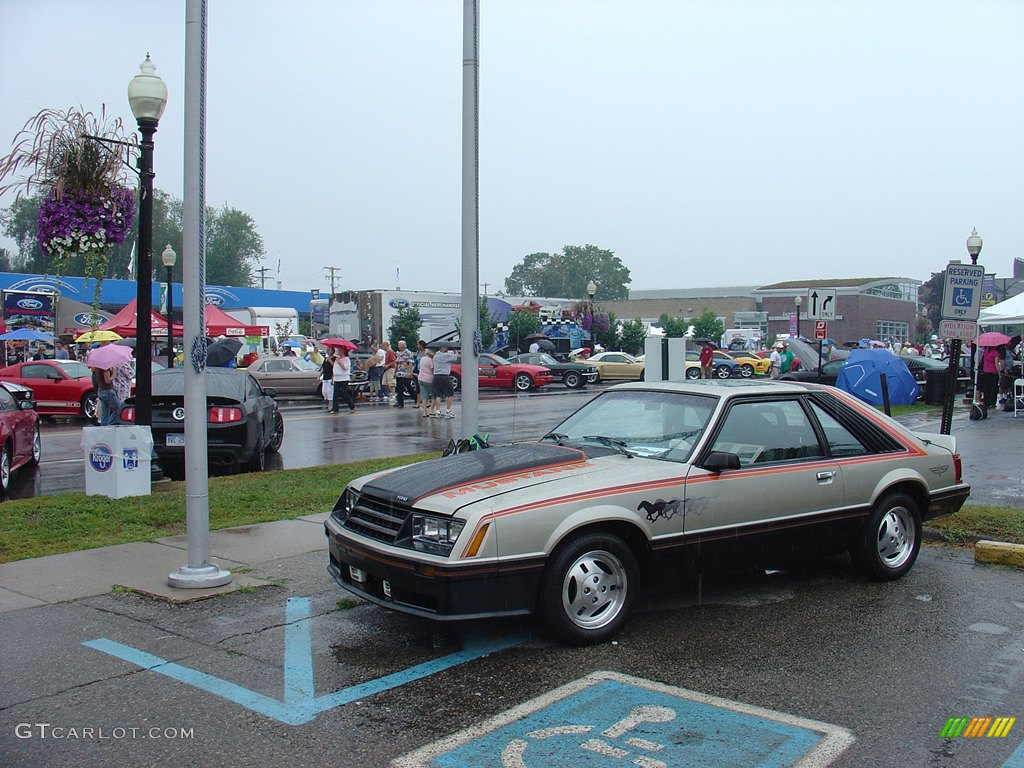 1979 ford mustang gt