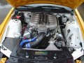 The Ford Racing 5.0 Liter DOHC (Cammer) V8 in a racing Mustang